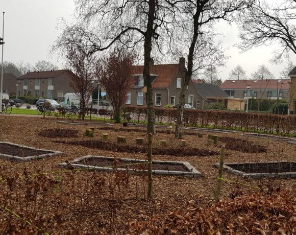 Aanleg duurzame moestuin school