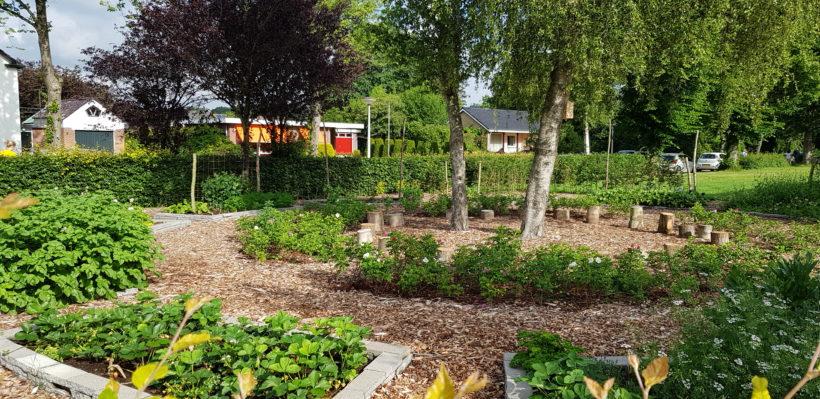 De aanleg van een ecologische schooltuin – Groene Hotspot